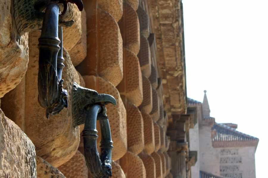 Andalucia Travel Experience Tour Palacio de Carlos y el entorno Alhambra