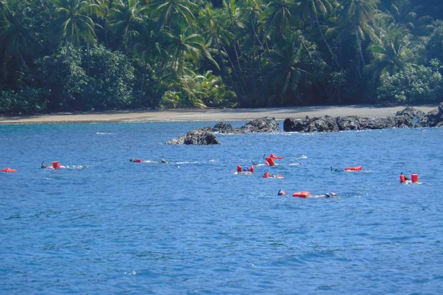 Uvita Information Center Caño Island from Uvita-Snorkeling full day tour by  Ballena Aventura