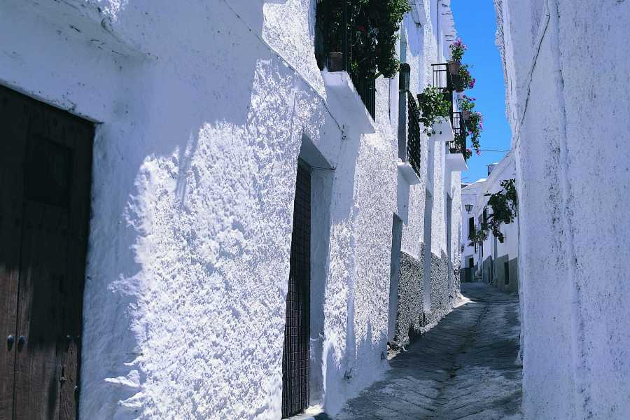 Andalucia Experience Alpujarra: Andalusian Legacy Tour