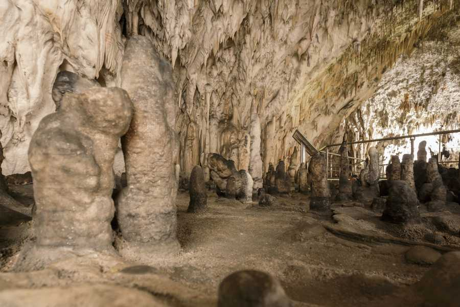 Nature Trips Karst and Caves , Slovenia Cycling Tour