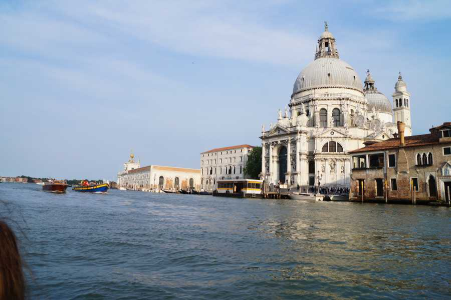 Venice Tours srl Amazing Grand Canal Guided tour by boat