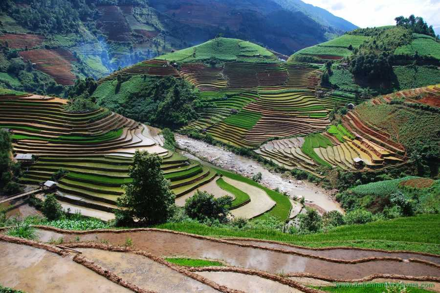 Viet Ventures Co., Ltd Photography tour - Rice terrace Vietnam 3 days