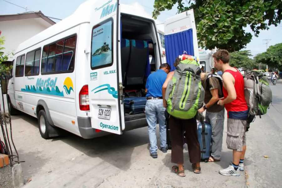Backpackers Transfer Palomino