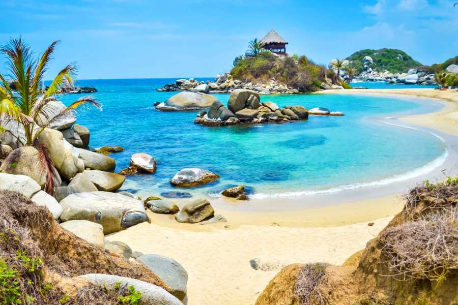 Backpackers Transfer con Marsol - Tayrona
