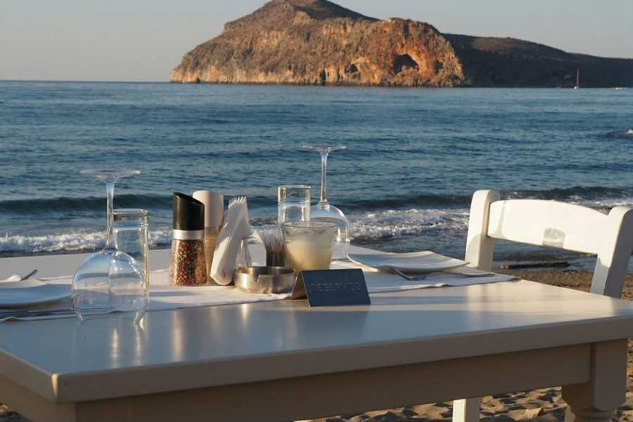 Destination Platanias Restaurang Olive Tree