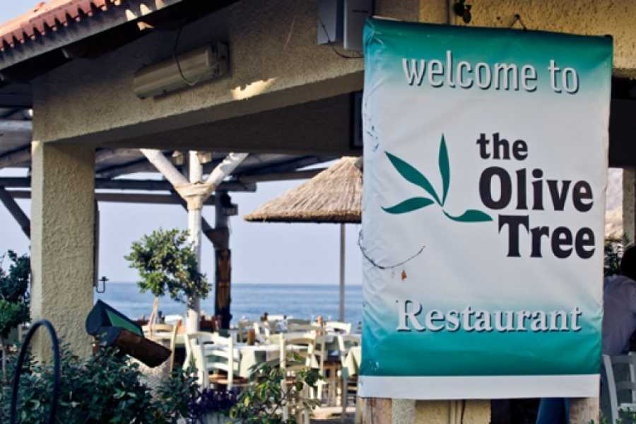 Destination Platanias Olive Tree Restaurant