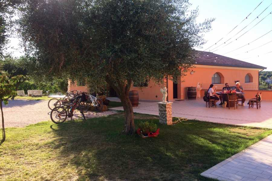 Visit Rimini Wine Tasting Bike Tour