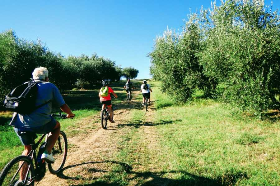 Rimini Reservation Santarcangelo Bike Tour