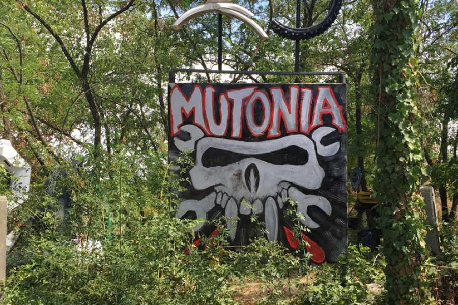 Visit Rimini Natura ed arte inaspettata