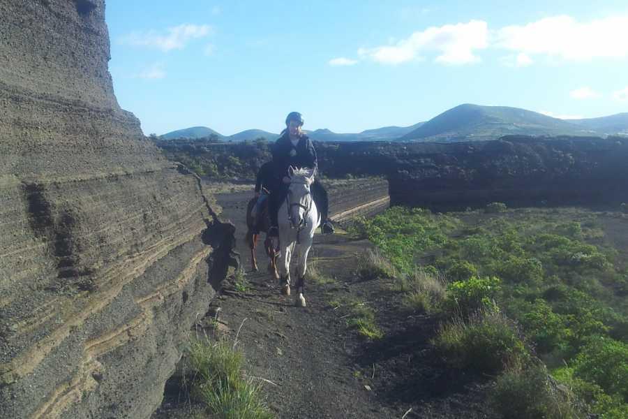 Hipica Canaria 2 Hours Horse Riding Tour: Adventurous excursion