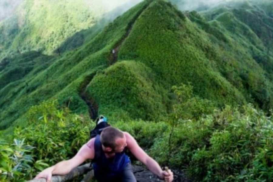 OCEAN TOURS Conquering Mount Fansipan