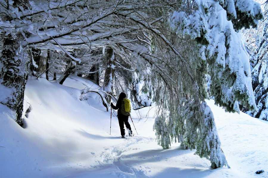 Modenatur Lago Santo - Sulle tracce degli antichi ghiacciai
