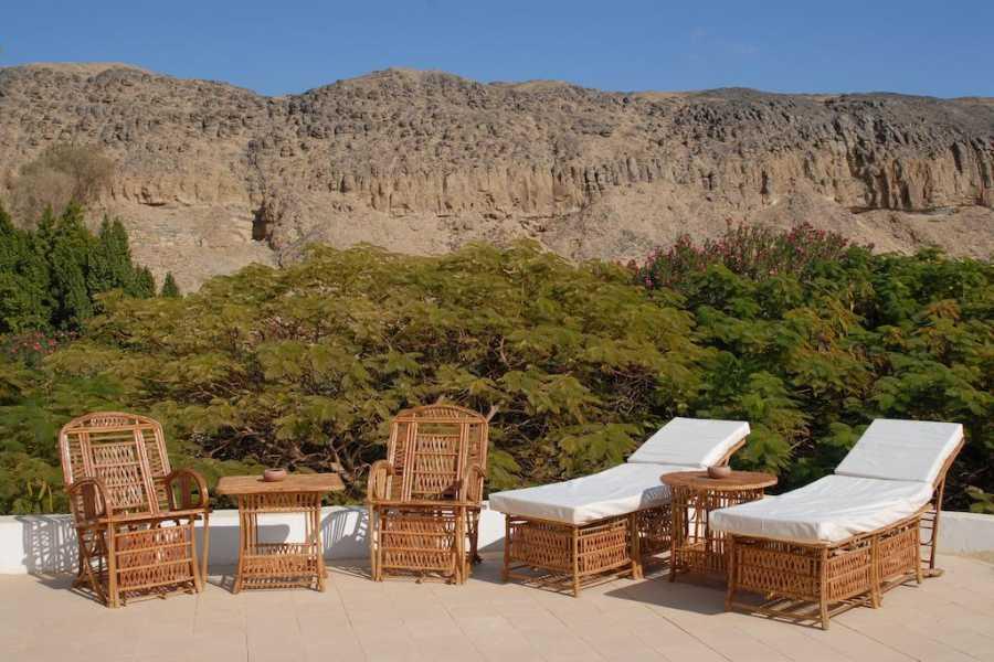 Excursies Egypte Caïro en witte woestijn Prachtige Rondreis 8 Dagen