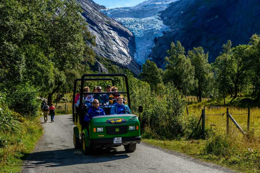 Olden Adventure Briksdal Glacier Shuttle Bus from port of olden