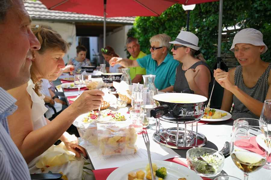 Murten Tourismus / Morat Tourisme BIO - Erlebnis im Grossen Moos
