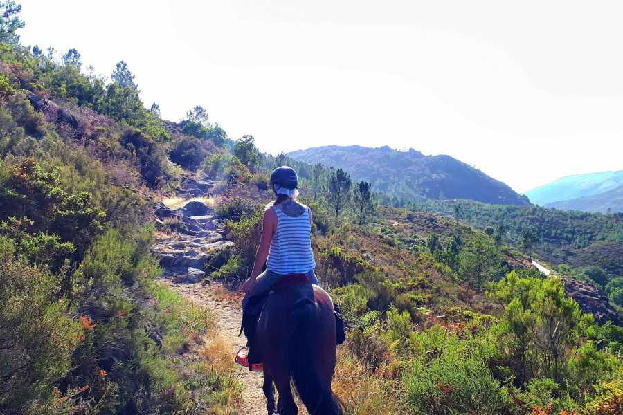 Gerês Equidesafios 1 hour Horseback ride