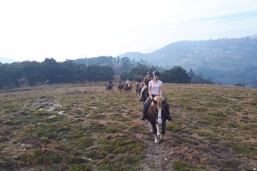 Gerês Equidesafios Passeio a Cavalo de 1h