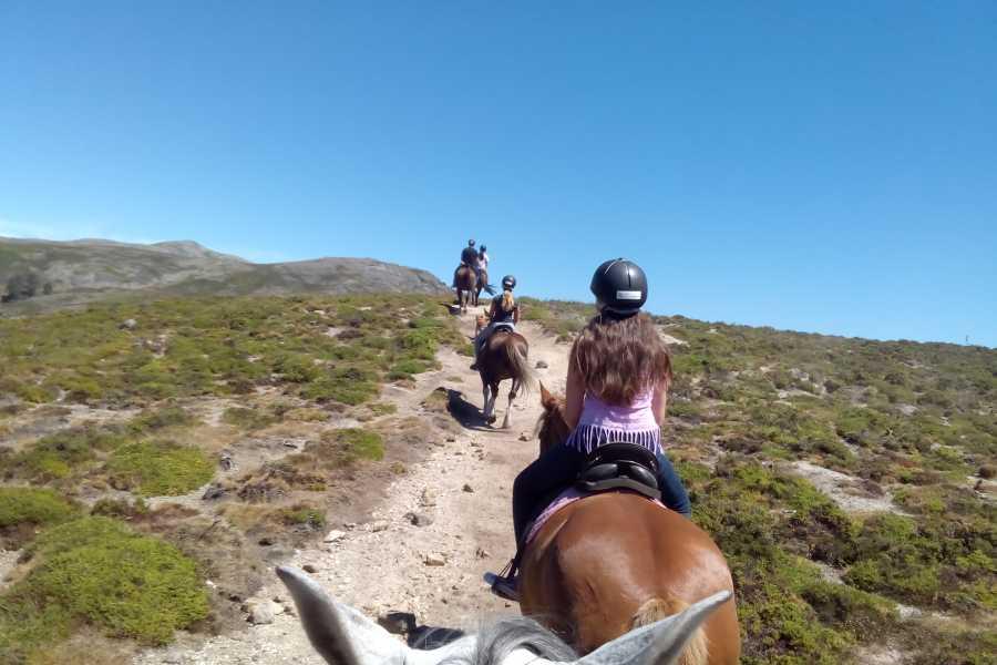 Gerês Equidesafios Passeio a Cavalo de 2h