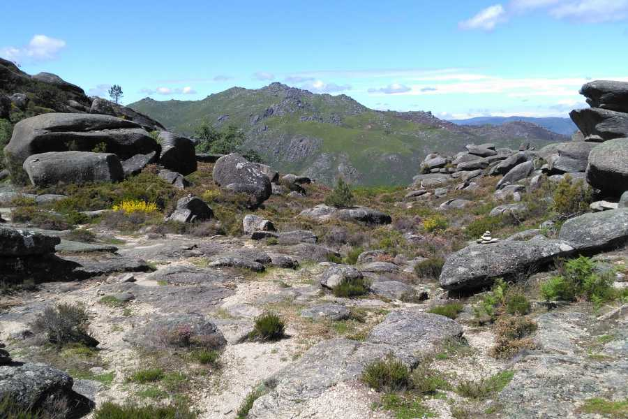 Gerês Equidesafios Tour: Gerês Nature 1 Day