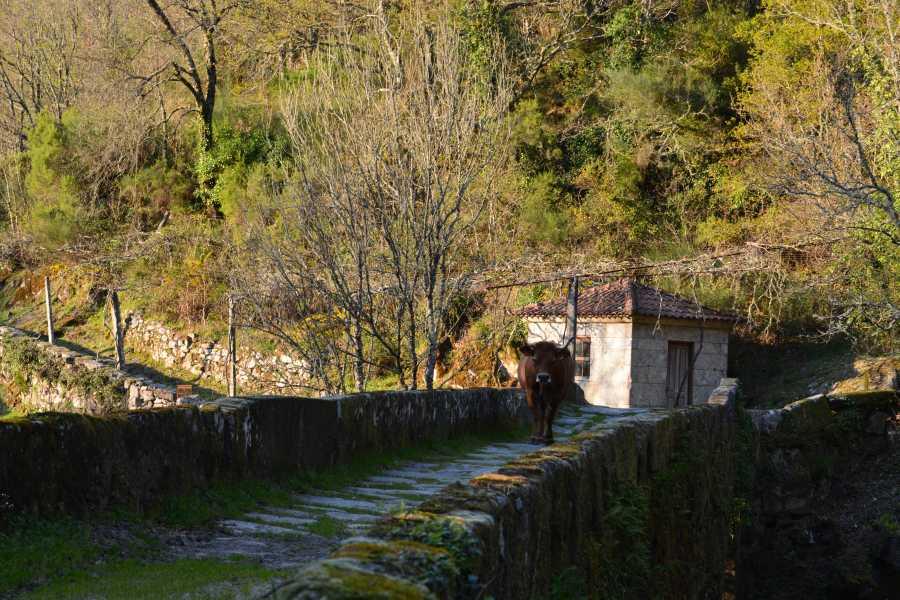 Gerês Equidesafios Tour: Sistelo 1 Dia