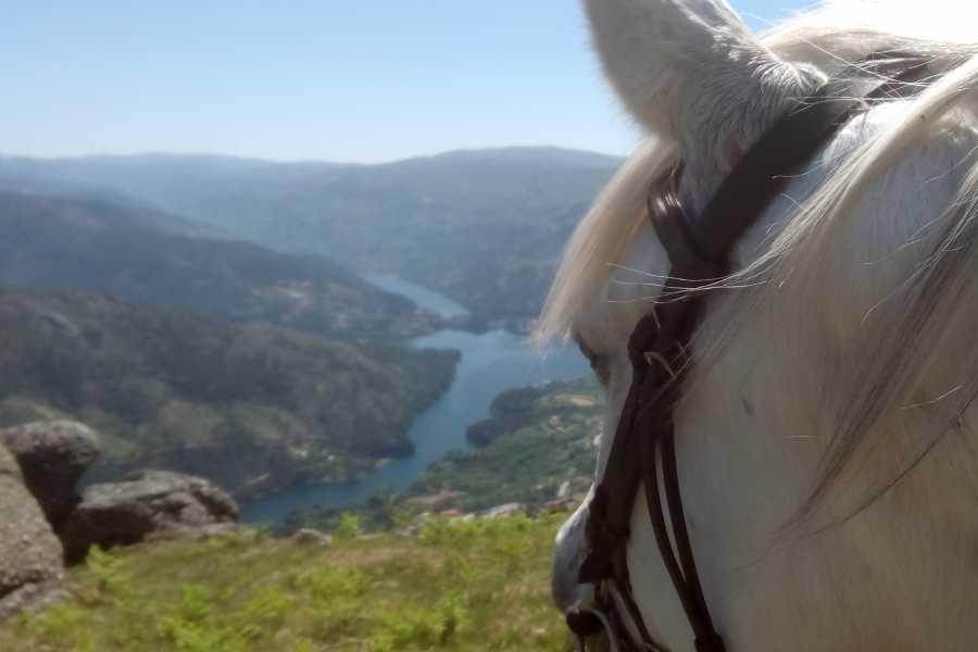 Gerês Equidesafios Trilho das Aldeias - 1 Dia a Cavalo
