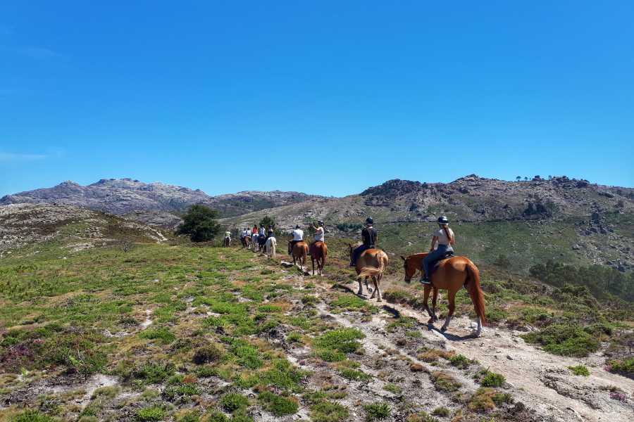 Gerês Equidesafios Passeio a Cavalo 30 minutos