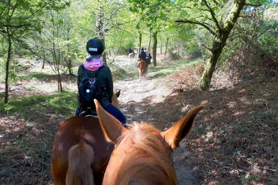 Gerês Equidesafios Passeio a Cavalo 30min