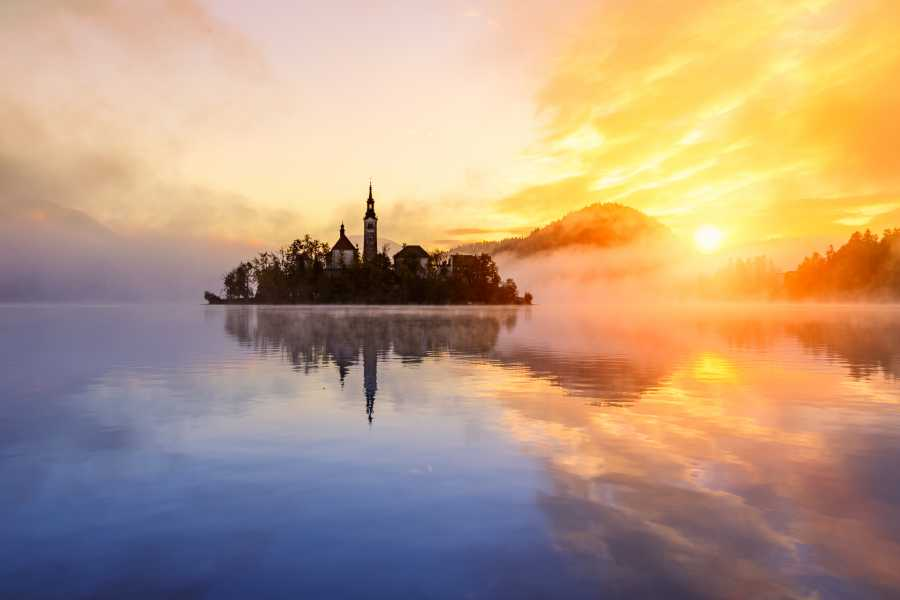 ToDoInSlovenia, brand of Kompas d.d. Premium tour to Lake Bled with beekeeping tradition