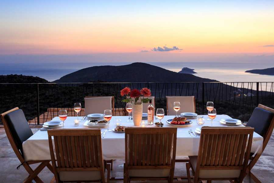 Grekaddict Kefalonia Sunset and Stargazing Vineyard Picnic Tour