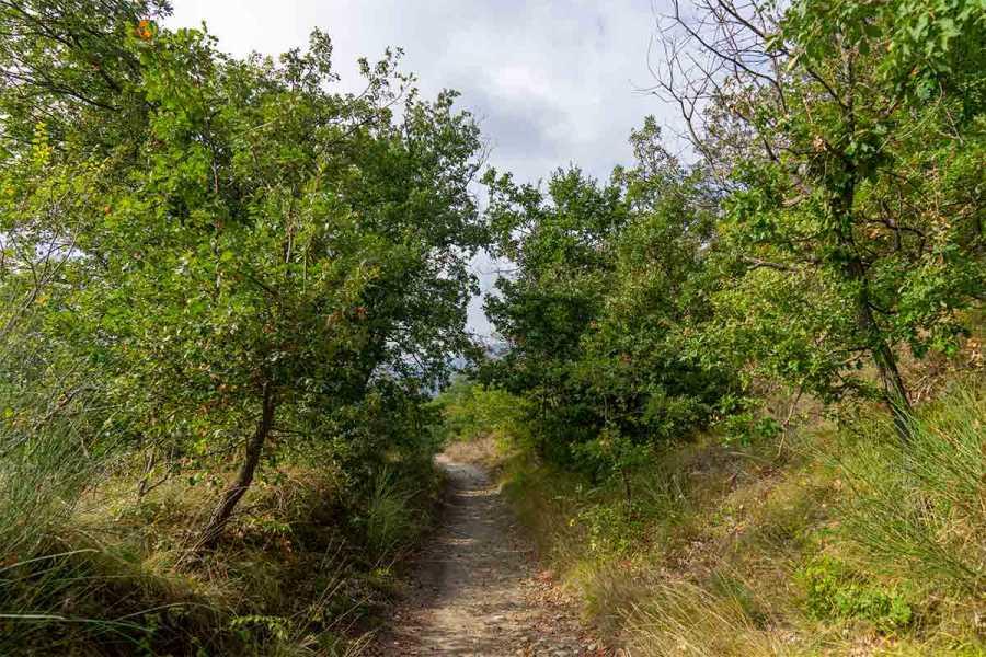 Enjoy Appennino E-Bike tour nel Parco Storico di Monte Sole