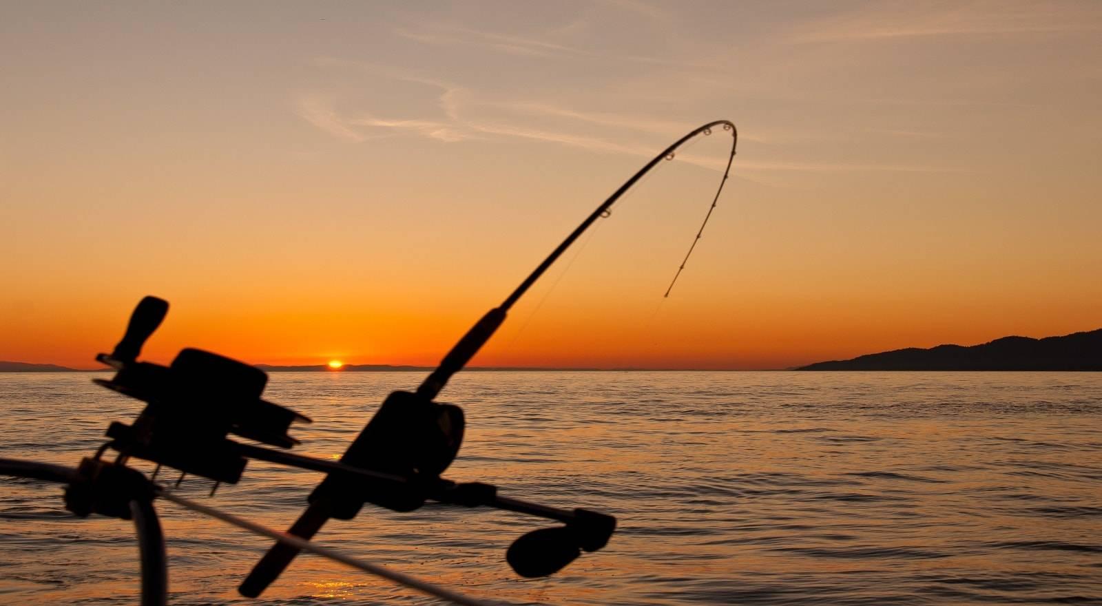Pêche aux Petits Poissons l'île Maurice - Privée