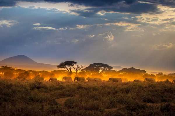 12 Days Kenya Expedition