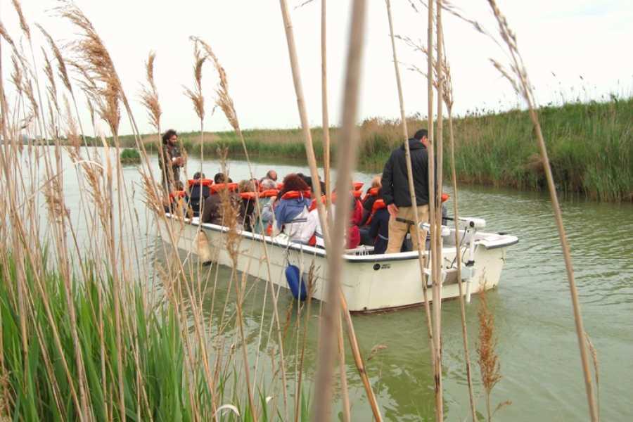 Ravenna Incoming Convention & Visitors Bureau Passeggiata delle erbe