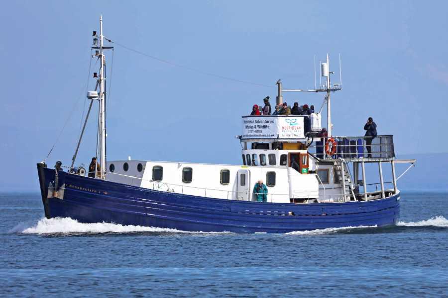 Hebridean Adventures Sea of the Hebrides - 3 Night Wildlife Cruise