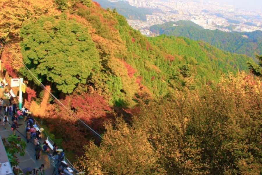 Mina Japan Mount Takao - English