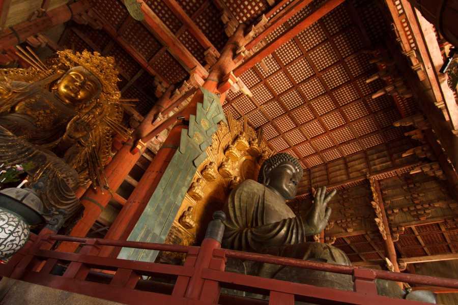 Mina Japan Nara - Spanish