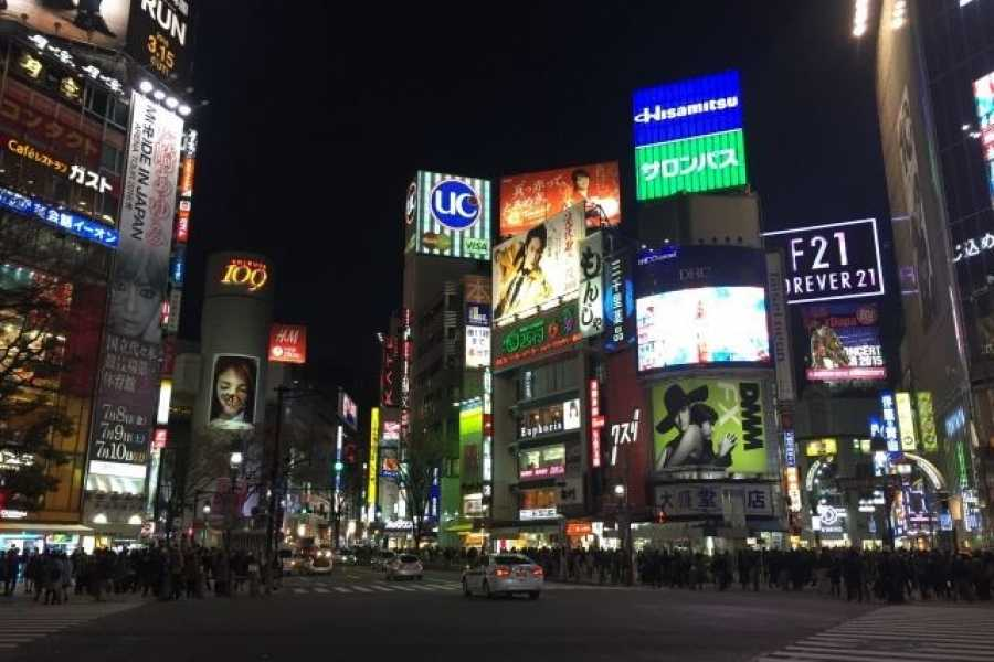 Mina Japan Tokyo City Night Tour - Spanish