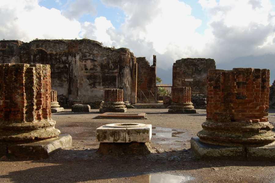 HP Travel Pompeii and Vesuvius - Semi Private Tour from Sorrento