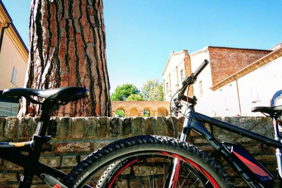 Visit Rimini This is Rimini!