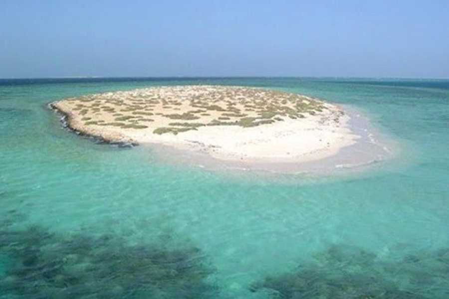 Marsa alam tours Private transfer from Luxor hotel To Marsa alam Hotel