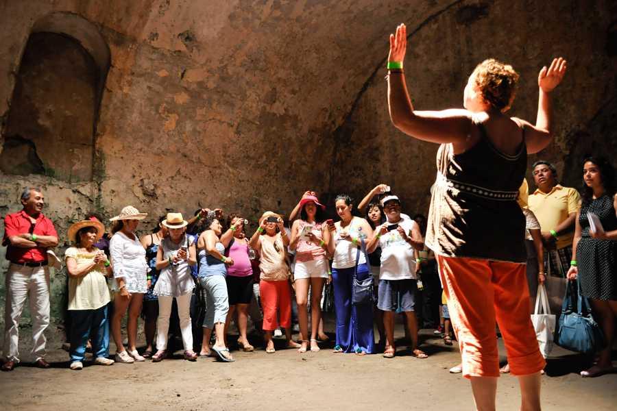 Tours y Tickets Operador Turístico Guia de Turistas privado con transporte