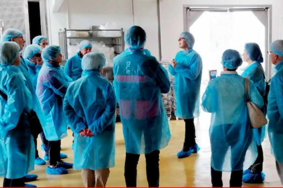 Promozione Alberghiera Visites à la fromagerie et dégustation