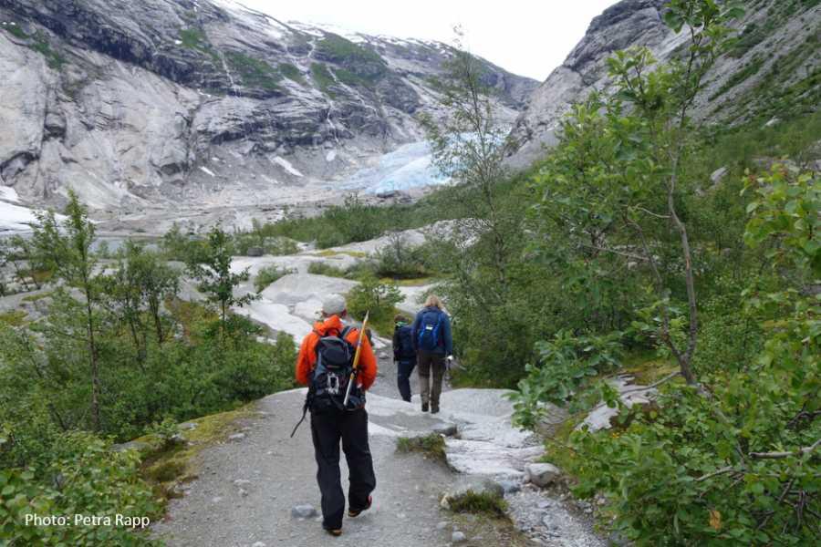 Travel like the locals Sogn & Fjordane Ein veg Sogndal - Nigardsbreen