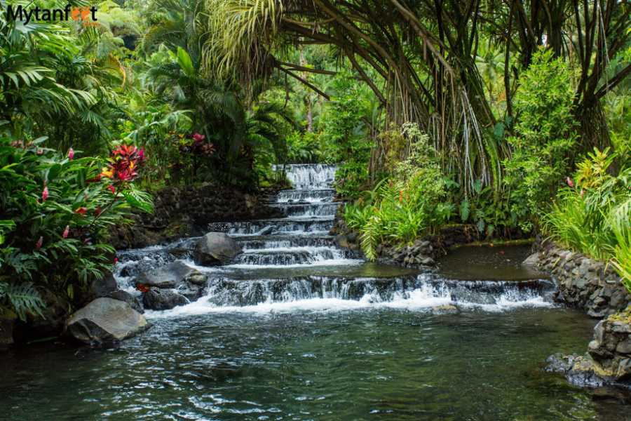 Tour Guanacaste Arenal Tabacon Hot Springs All Day Pass