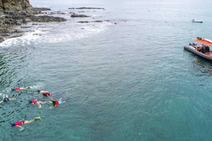 Tour Guanacaste Riu Guanacaste Snorkeling Safari