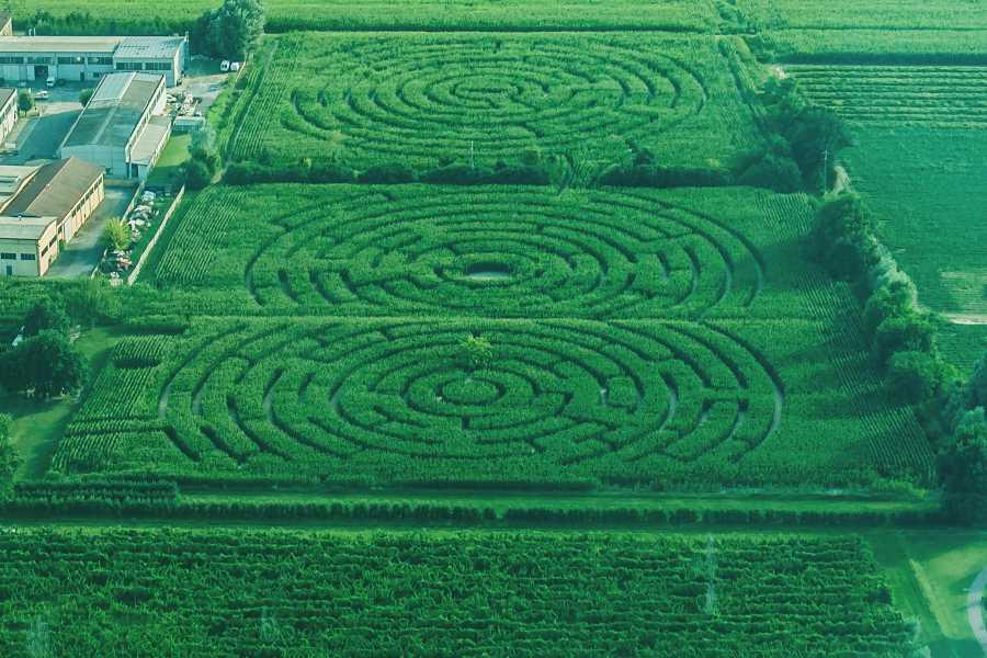 Promozione Alberghiera Ausgesetztes Vergängliches Labyrinth und Labyrinth aus Mais