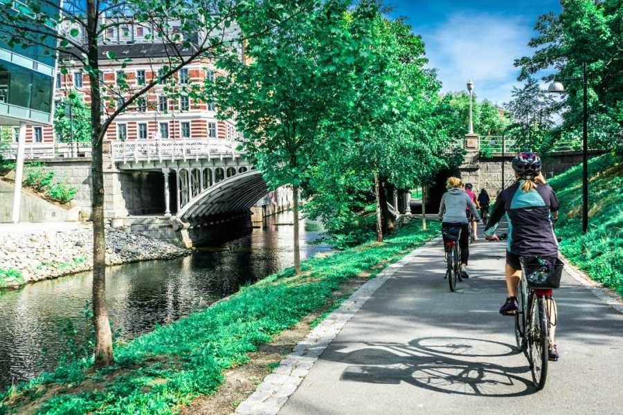 Viking Biking Bike Tour: Oslo's Urban Treasures
