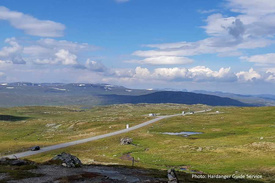Travel like the locals OPPLEV HARDANGERVIDDA
