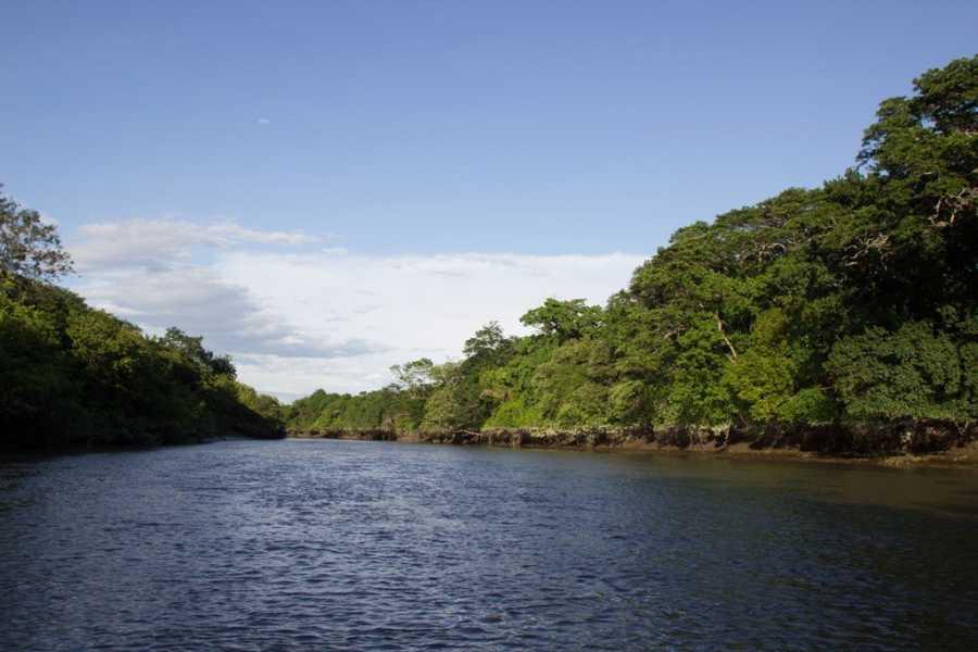 Tour Guanacaste Palo Verde & Coffee Tour by TAM