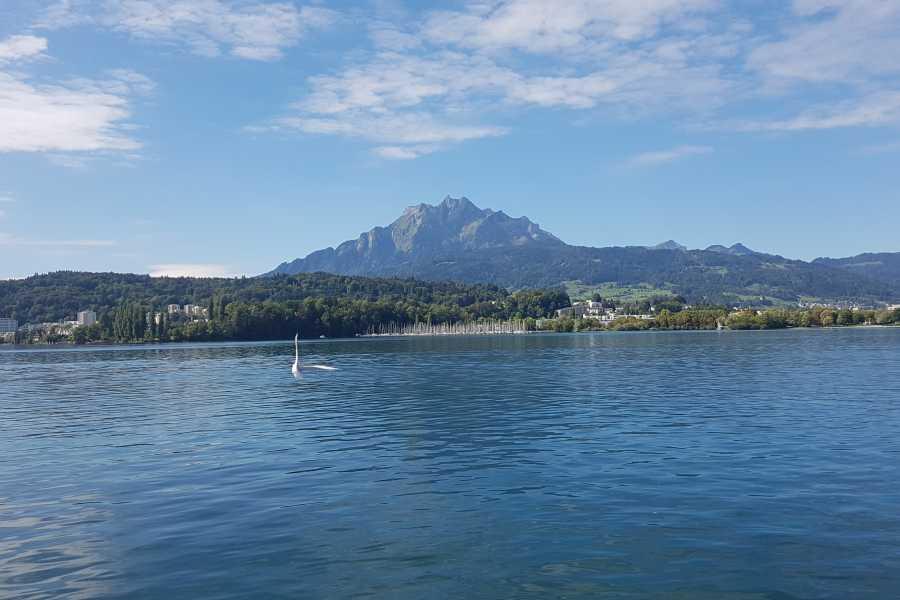 SwissTravelGuide Mount Pilatus Golden Round Trip with Lake Cruise (GT)